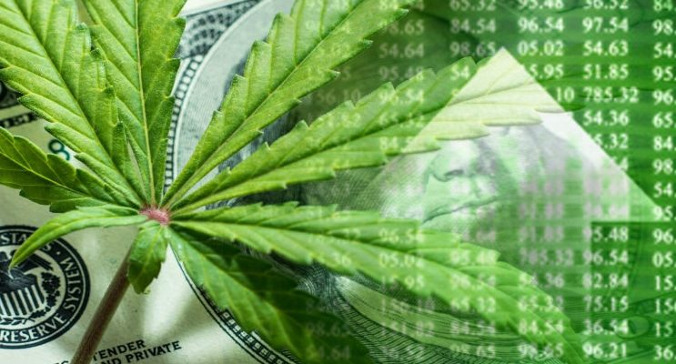 Top Marijuana Stocks to Check Out in 2019