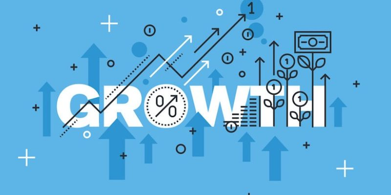 How Should Your Business Grow?