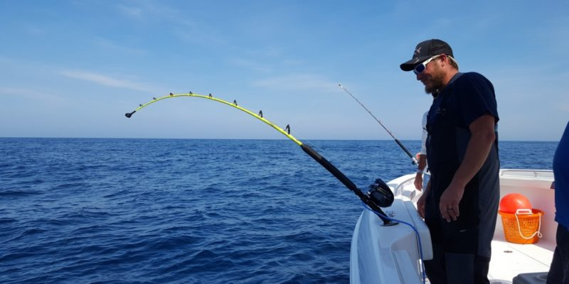 What Are The Top Electric Fishing Reels You Can Get?
