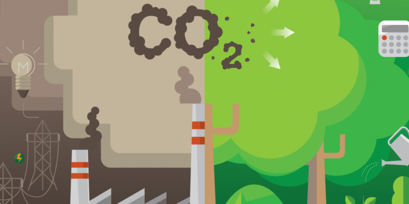 The best way to reduce carbon footprint