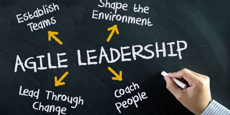 5 Ways to Build Your Agile Leadership Skills